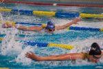 Aqua-Novio'94 Zwemmers